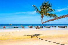 Sairee Beach ist der längste Strand auf Koh Tao und erstreckt sich über 1,8 km entlang der Westküste der Insel. Dies ist der beste Platz, um die berühmten Sonnenuntergänge von Koh Tao zu beobachten Beach Accommodation, Pub Crawl, Water Activities, Beach Bars, Koh Tao, Great View, Long Beach, Snorkeling, Cool Places To Visit