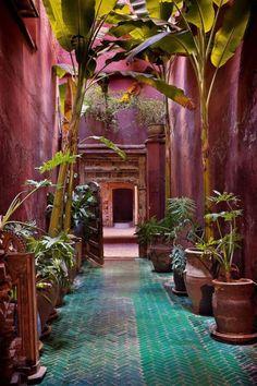 Moroccan Garden, Moroccan Style, Moroccan Decor, Tropical Garden, Moroccan Lanterns, Moroccan Bedroom, Moroccan Design, Colourful Garden, Indian Garden