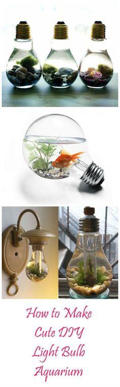 How to Make Cute DIY Light Bulb Aquarium