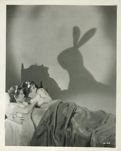 Rabbits: frightening people since people existed.