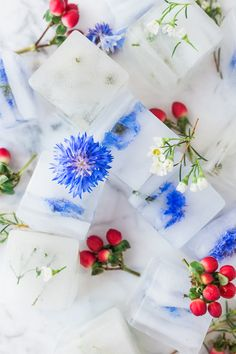DIY Floral Ice Cubes for the Fourth With Fourth of July fast approaching, chances are you've got some sort… Read Edible Flowers, Diy Flowers, Flower Ice Cubes, Baby Shower, Bridal Shower, Upcycled Crafts, Ice Cube Trays, Fun To Be One, Diy Party