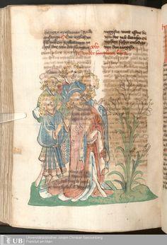 566 [281v] - Ms. Carm. 1 (Ausst. 47) - Das Buch der Natur - Page - Mittelalterliche Handschriften - Digitale Sammlungen  Hagenau, [um 1440]
