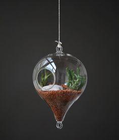 Aerárium oboustranné - Zahrada na niti