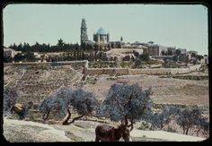 """Mt. Zion, Jerusalem. """"As the mountains surround Jerusalem, so the Lord surrounds his people both now and forevermore"""" Psalm 125:2"""