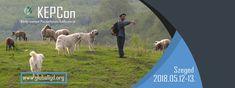 Közép-európai Pásztorkutyás Konferencia KEPCon - Iránytű a pásztorkutyás jövőbe Erő, dinamizmus, biztonság, tudatosság, odaadás és figyelem. Gondolta volna, hogy ezek a legfontosabb ismérvei egy igazi, képességeiben kiteljesedett pásztorkutyának? Szeretn... Horses, Animals, Animales, Animaux, Horse, Animal, Animais, Dieren