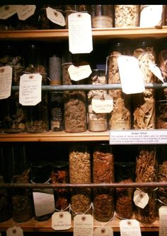 Apothecary artifact cures displayed at the witchcraft museum in Boscastle, Cornwall.