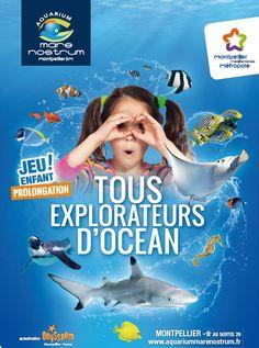 Sortie, Activités & Loisirs à Montpellier   Aquarium Mare Nostrum
