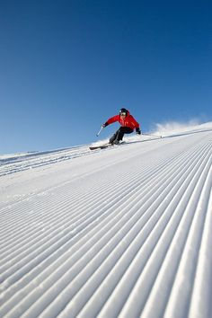 10 Skiing Pictures That Will Make Your Heart Stop - Nevada is home to some of the best Skiing locations and the freshest snow in the country. Alpine Skiing, Snow Skiing, Winter Fun, Winter Snow, Wallpaper Cross, Ski Extreme, Location Ski, Ski Freeride, Foto Picture