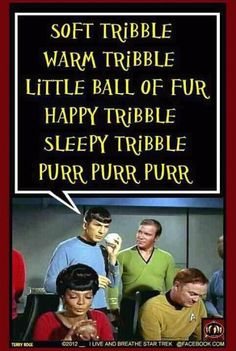 """""""Soft Tribble, Warm Tribble, little ball of fur…"""" -for my Star Trek and Big Bang Theory friends..."""