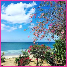 Happy Monday from LBC! . #staylittlebay #littlebay #littlebaycabins #jamaica #Negril #westmoreland #travel #beach #vacation #deals #deal #sea #ocean #sun #waves #swimming #travelgram #funinthesun #reggae #irie #rasta #praisejah #negriljamaica #jamaicabeach #nature #traveling #tourism #wanderlust #destination #adventure #pinterest #instagram #ifttt