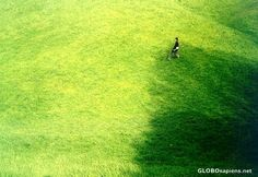 How Green is My Valley? Green Grass, Environment, Gallery, Photography, Photograph, Roof Rack, Photography Business, Photoshoot, Fotografie