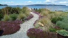 Image result for coan waterfront landscape