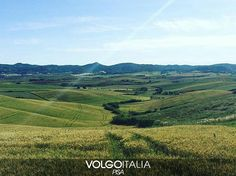 Orciano Pisano - Pisa-Italia  Foto di @simoneinnocenti  #toscana #tuscany #italia #italy #pisa #orcianopisano #italytrip #italytour #travelingram #madeinitaly #volgopisa #volgotoscana #volgoitalia #tourism #turism #turismo #instatravel #iloveitaly #volgosocial by volgopisa