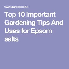 Top 10 Important Gardening Tips And Uses for Epsom salts