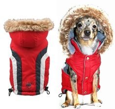 Swiss Alpine Dog Ski Vest - Red.  This sleeveless ski vest with detachable hood is a great addition to any dogs winter wardrobe.  #dogclothes