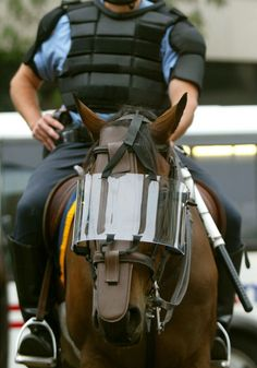 Police and horse with riot gear- wow! Never seen this... But at least they protect their animals...