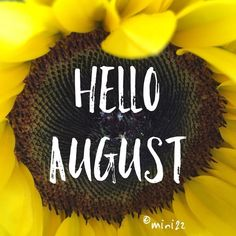 Hello August Quotes And Sayings - Free June 2020 Calendar Printable Blank Templates & Holidays August Baby, Hello August, August Month, April 13, Calendar Quotes, Calendar Board, Calendar Printable, Fb Cover Photos, Cover Photo Quotes