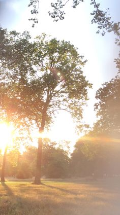 Hyde Park bathed in sunlight ahead of the Burberry Prorsum S/S14 show - shot with #iPhone5s #LFW
