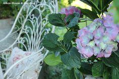 Aiken House & Gardens: Romantic Garden Style