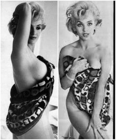 """Not Marilyn Monroe.Of ypu have ever seen Marilyn Nudr,you could tell alone from the fact that Matilyn id jot have brrasts thia large or ,""""full."""" The Best Photos Of Marilyn Monroe….That Aren't Marilyn Monroe Marilyn Monroe, Tilda Swinton, Divas, Classic Hollywood, Old Hollywood, Most Beautiful Women, Beautiful People, Zsa Zsa Gabor, Lea Seydoux"""