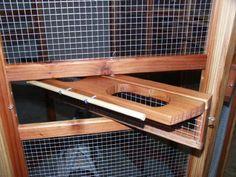 Aviary Project
