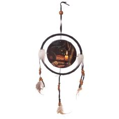 Black Cat Dream catcher by Lisa Parker Beautiful picture of a black cat sitting on a pile of books on this lovely dream catcher.  It has feathers and beads hang