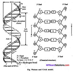 Pin by NCERT Solutions on HssLive Kerala Board Solutions