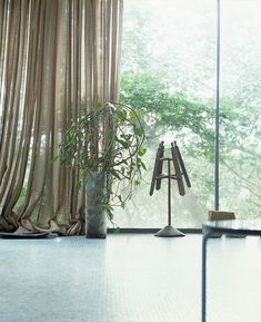 Interesting series of pictures shot by Berlin photographer Alexander Gnädinger of Lina Bo Bardi's Glass House Glass House, Home Accessories, Curtains, The Originals, Origins, Furniture, Berlin, Interiors, Home Decor