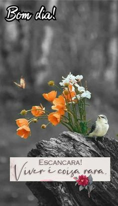 Good Morning, Birds, Painting, Colorful Quotes, Good Morning Friends, Cute Puppies, Good Morning Quotes, Good Morning Images, Good Morning Wishes