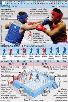 The Graphic News guide to each sport in the Olympics, from Archery to Wrestling Boxing Training Workout, Boxer Workout, Mma Workout, Kickboxing Workout, Boxer Training, Boxing Rules, Boxing Gym, Mma Boxing, Olympic Boxing