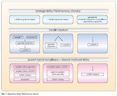 Výsledek obrázku pro jak léčit parkinsonovu nemoc