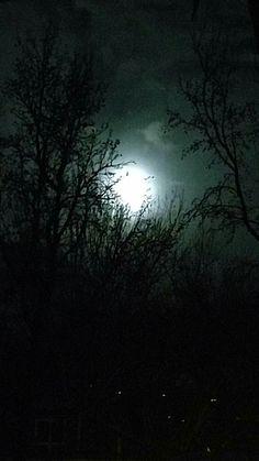 Liz Shreve moonrise in Boise 1/11/17