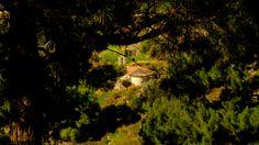 Aigina Island Greece