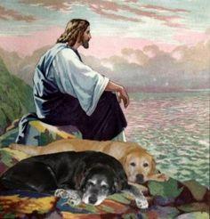 happy birthdays, dog heaven, god, spiritu, old dogs, faith, pet, jesus christ, art