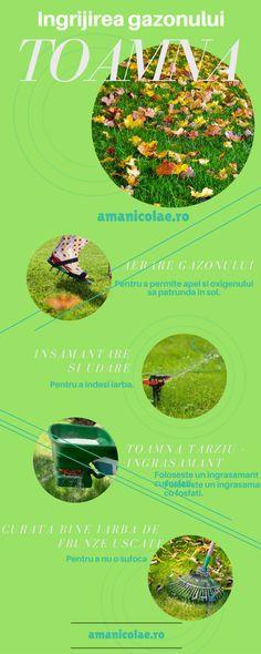 Ingrijirea gazonului toamna – Ama Nicolae Movie Posters, Sun, Lawn, Film Poster, Film Posters