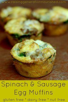 Spinach  Sausage Egg Muffins :: Gluten Free, Dairy Free, Nut Free - Raising Generation Nourished