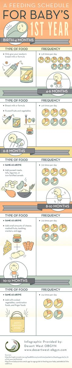 A Feeding Schedule for Baby's 1st Year Infographic