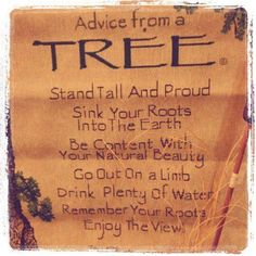 Be like the trees. :)