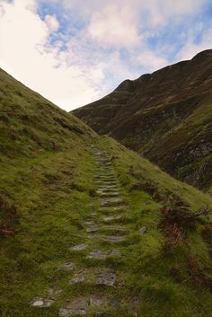 Ancient Path, St Mary's Loch, Scotland. DBryant (Dorothy Dunnett, Lymond Chronicles)