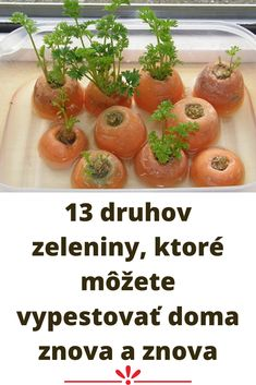 13 druhov zeleniny, ktoré môžete vypestovať doma znova a znova Cantaloupe, Vegetables, Fruit, Cilantro, Vegetable Recipes, Veggies