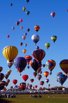 Go up for the International Bristol Balloon Fiesta