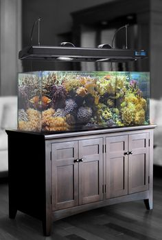 Aquarium stand design: plans and ideas! : Aquarium stand Aquarium stand design: plans and ideas! about aquarium,aquarium top designs,Marine fish tanks