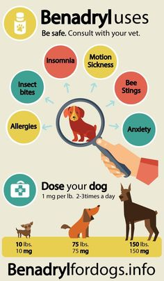 ALWAYS consult with your veterinarian before giving your dog any medication!