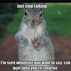 Photo: Just stop talking- I am sure whatever you are going to say can wait until you are smarter! #lol #snarky #haha #funny #classic #followme #bestof #instagood #funny #humor @heidikate1