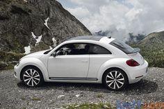 Beetle (Sport) Beetle Car, Volkswagen Beetle Nuevo, Bug Car, Beetle Convertible, Best Luxury Cars, Exterior, Sweet Cars, Automobile, Vw Beetles