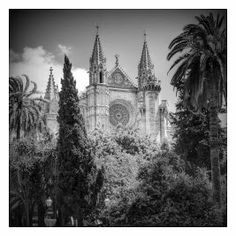 cathedral of palma de mallorca Majorca, Barcelona Cathedral, Spain, Community, Island, Photos, Travel, Pictures, Viajes