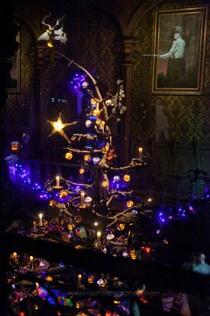Disneyland // Haunted Mansion Holiday // Ballroom Christmas Tree