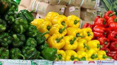 sweet pepper/พริกหวาน