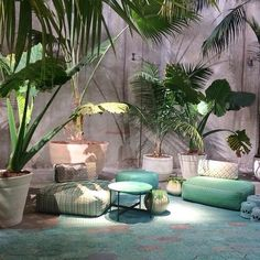 Cool planting and mix of furniture