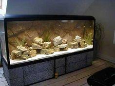 Beleza não é tudo na hora de escolher o móvel para o aquário.